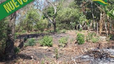 Terreno en Santo Domingo